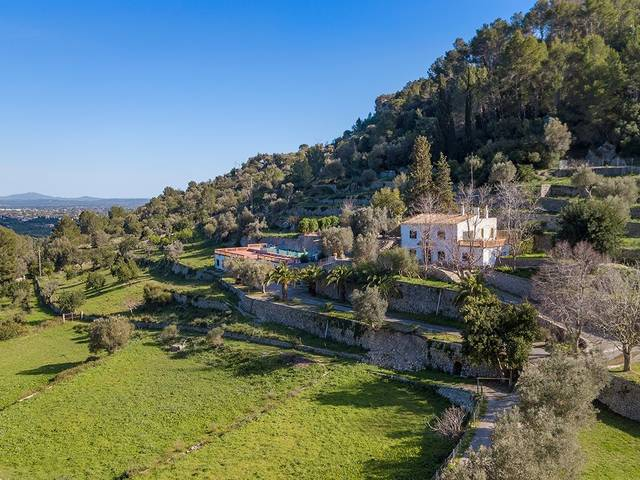Country finca with a pool and valuable agritourism license in Alaró