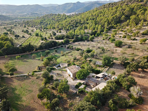 ALA52596 Finca on a 52.500m2 plot of land just 10 minutes away from Alaro