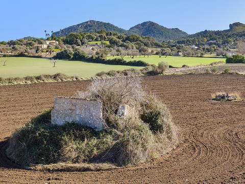 ALC0533 Beautiful rural building plot, 10 minutes from the beach of Alcudia.