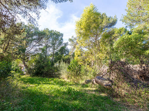 BON0536 Building plot in walking distance from the beach in Bon Aire, Alcúdia
