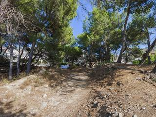 Great plot with sea views for sale in Cala San Vicente, near Pollensa