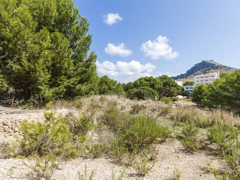 CAV0398 Unique opportunity to buy one of the last sea view plots for sale in Cala San Vicente