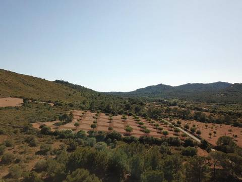 MAN0455E Awesome plot of land with countryside views near the Rafa Nadal Tennis Academy