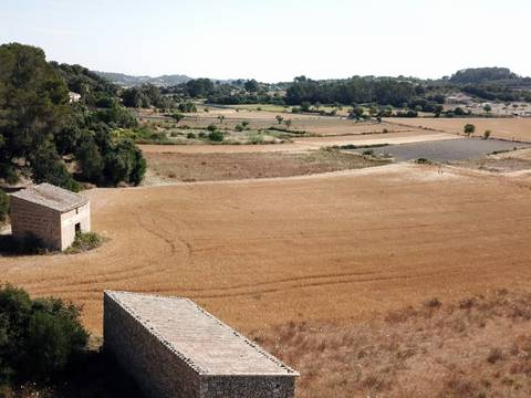 MON0454 Country building plot with lots of potential in Sant Joan, Montuïri