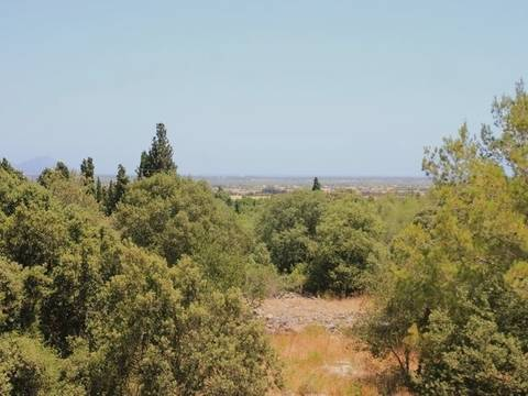 MUR0266POL0 Attractive country side plot in the area of Playa de Muro, Mallorca North