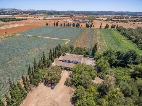 MUR50048 Stately Mallorcan country house with agricultural land between Muro and Llubí