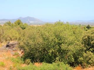 Project for new country home with panoramic views in Playa de Muro, Mallorca North