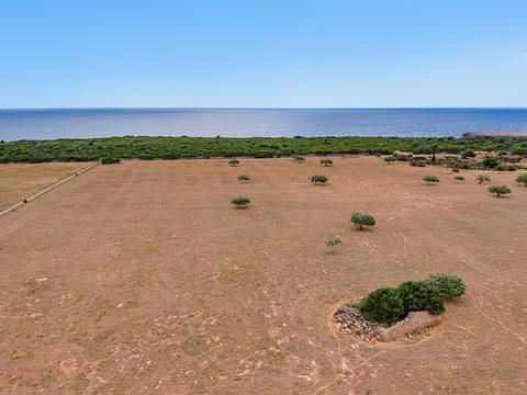 POC0502 Frontline plot of over 20 hectares for sale in Porto Cristo