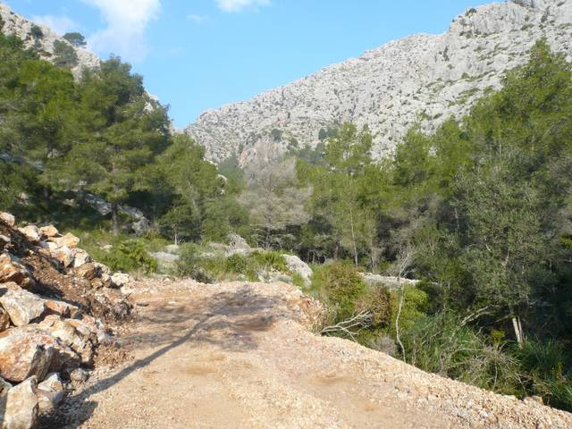 Fantastic rustic plot for 1 detached country house in Pollença - Majorca!!!