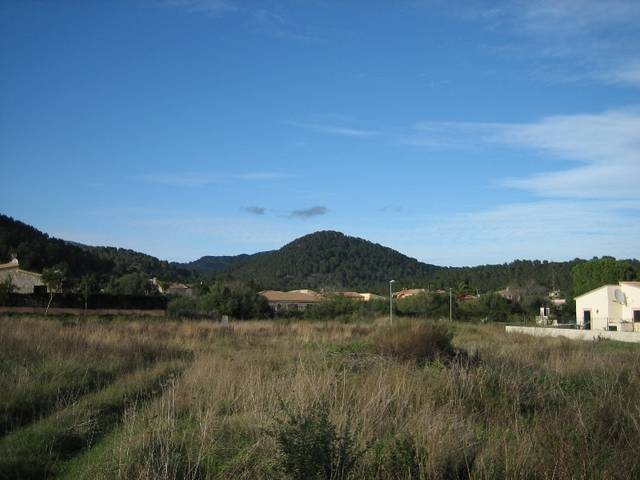 Large plot for sale in Pollensa with building license