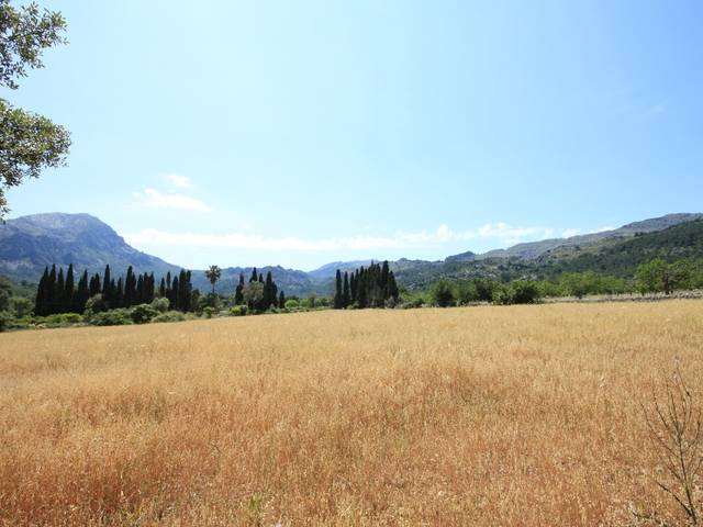 An exciting opportunity to acquire a building plot with planning permission, Pollensa