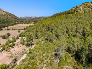 Picturesque plot with planning license close to the old town of Pollensa