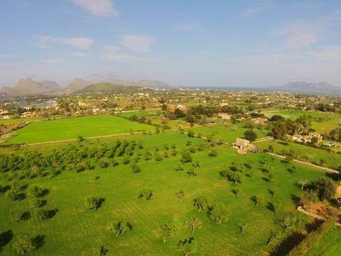 POL0346 Large exceptional land for sale in Pollensa