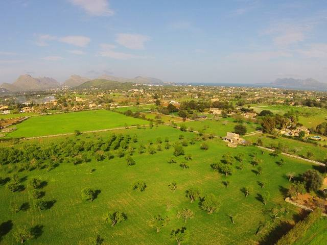 Large exceptional land for sale in Pollensa