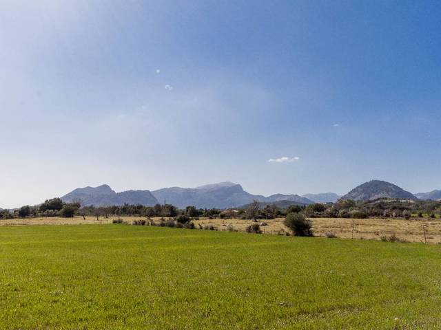 Country plots for sale in Pollensa with sea views