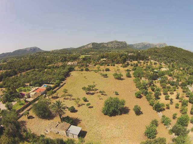Splendid plot in the countryside just on the outskirts of Pollensa town