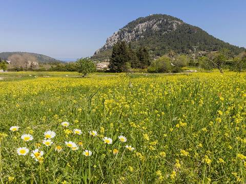 POL0382POL5 Amazing plot of land in Pollensa, nearly 29.000 m2 with fantastic sea and mountains views