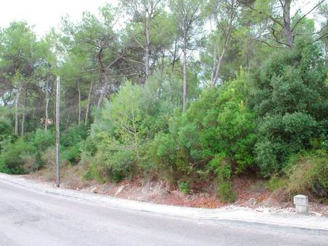POL0438 Excellent plot in the countryside in a quiet residential area near Pollensa