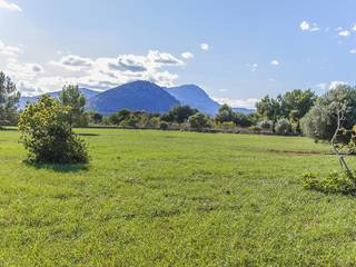 Land of 15,800 m2 with an approved project located between Pollensa and Puerto Pollensa
