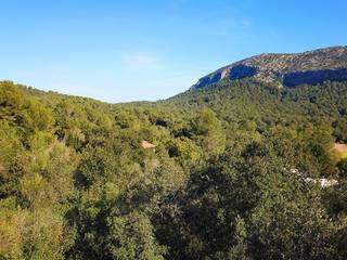 Opportunity to build your dream home in the north of Mallorca