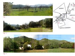 Giant plot with spectacular views in La Vall de March, Pollensa