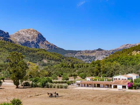 POL50077 Unique country house in one of the most beautiful valleys near Pollensa