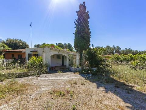 POL52472POL4 Mallorcan country house with lots of potential close to Pollensa