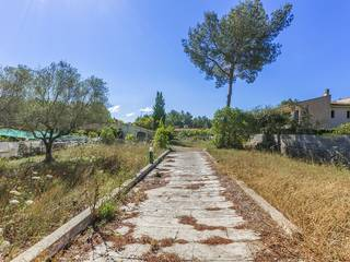 Mallorcan country house with lots of potential close to Pollensa
