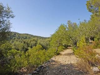 Manor property for sale in Mallorca
