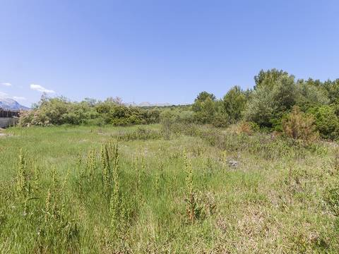 PTP0204 Building plot only about 200 metres away from the beach in Puerto Pollensa