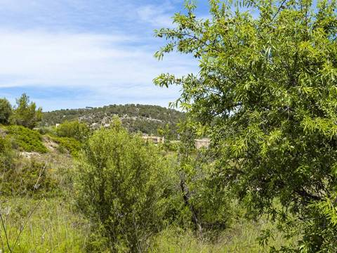 SWOCAL0179 Building plot investment opportunity in Calvià