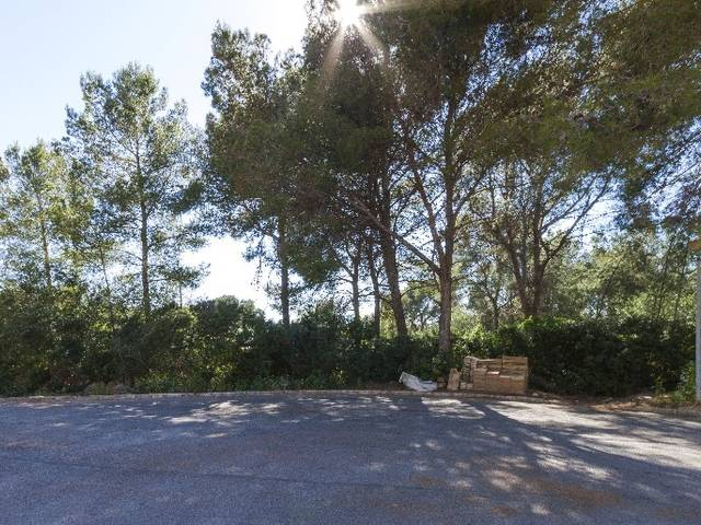 Excellent flat plot for sale in Cala Vinyes