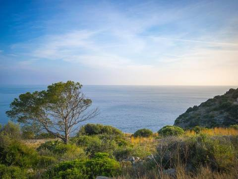 SWOPTA0079JF Large plot for sale in Puerto Andratx with sea views