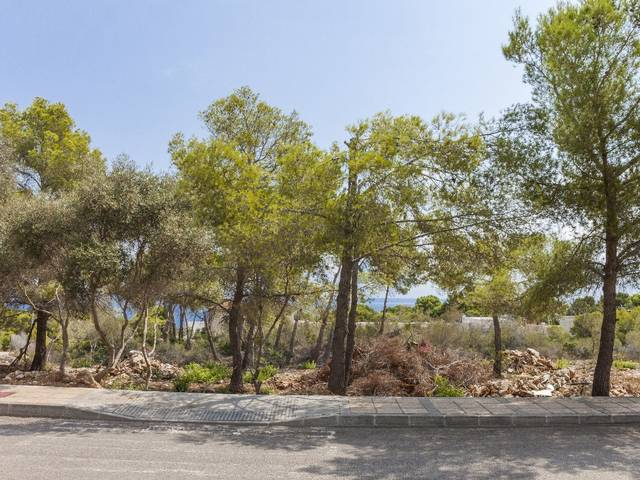 South facing premium plot with sea views in Sol de Mallorca