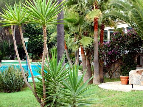 SWOSOV4317 Large villa for sale with fantastic Mediterranean garden