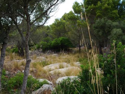VAL0366 Plot for sale with possibility to build in George Sand